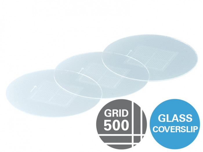Gridded Glass Coverslips Grid-500