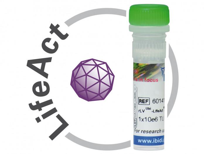 rLV-Ubi-LifeAct Lentiviral Vectors