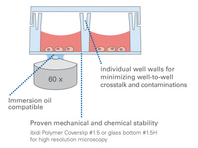 µ-Slide 8 Well high Glass Bottom