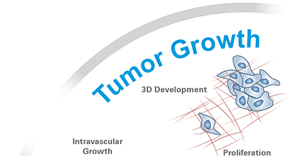 Tumor Growth