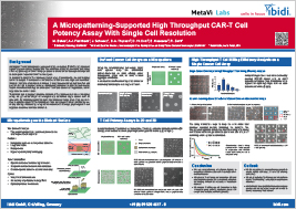 A Micropatterning-Supported High Throughput CAR-T Cell Potency Assay With Single Cell Resolution